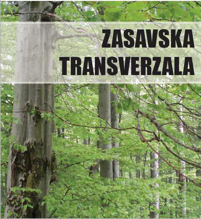 ZASAVSKA TRANSVERZALA